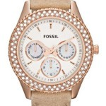 fossil-4